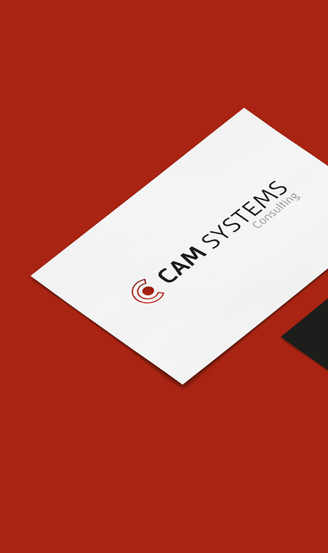 cam systems consulting münchen